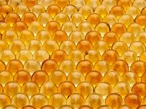 Pigułki z wątróbka olejem Zdjęcie Stock