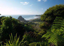 Piha beach. Western shore of Auckland, New Zealand Stock Image