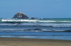 Piha beach Royalty Free Stock Photo