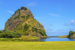 Piha Beach Auckland New Zealand Royalty Free Stock Photo