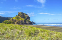 Piha Beach Auckland New Zealand Royalty Free Stock Photography