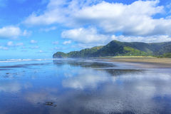 Piha Beach Auckland New Zealand Stock Photos