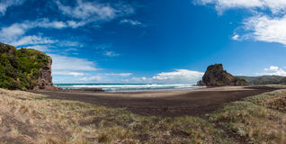 Piha beach. Beautiful Piha beach near Auckland with a mighty Lion Rock, New Zealand. Panoramic photo Stock Photo