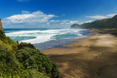Piha beach stock images
