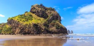 Piha Beach and Lion Rock, Auckland Region, New Zealand royalty free stock photo