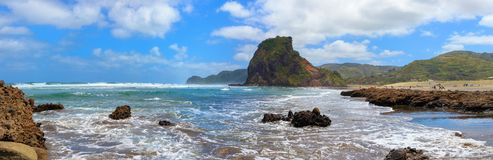 Piha Beach and Lion Rock panorama, Auckland Region, New Zealand stock image