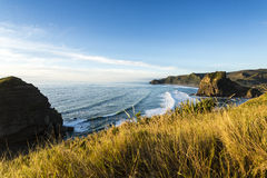 Piha Beach, New Zealand Stock Photography