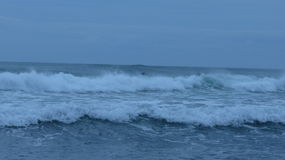 Piha Beach, New Zealand stock image