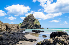 Piha Beach in New Zealand. Piha beach which is located at the West Coast in Auckland,New Zealand stock images