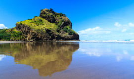 Piha Beach Stock Photos