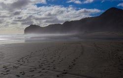 Piha strand Arkivfoton