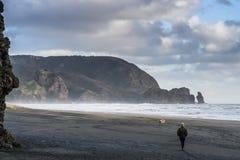 Piha strand arkivbild