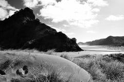 Piha strand, Nya Zeeland Royaltyfri Foto
