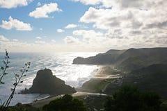Piha strand, Nya Zeeland Arkivbild