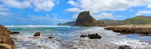 Piha strand- och Lion Rock panorama, Auckland region, Nya Zeeland fotografering för bildbyråer