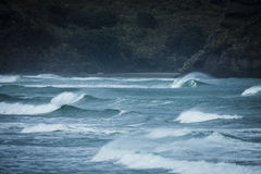 Piha Surf Royalty Free Stock Photography