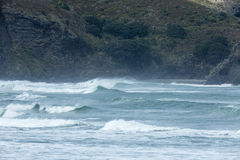 Piha Surf. A powerful wave surging and breaking and Piha Beach, Auckland, NZ stock photography