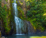 Piha Waterfalls, Kitekite Falls Auckland New Zealand. At the Base of Piha Waterfalls, Kitekite Falls Auckland New Zealand stock photo