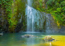 Piha Waterfalls, Kitekite Falls Auckland New Zealand. At the Base of Piha Waterfalls, Kitekite Falls Auckland New Zealand Stock Image