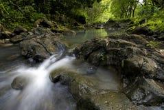 Pi'ina'au stream in Ke'anae Arboretum, Maui, Hawaii Royalty Free Stock Photography