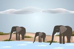 Pijący stada słonie - wektor Obrazy Royalty Free