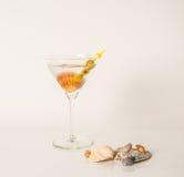 Pije w Martini szkle, Martini napój z zielonymi oliwkami, seashel Fotografia Royalty Free