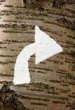 Pijl die net op een bossleep richt stock afbeelding