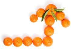 Pijl door mandarijnen wordt gemaakt die Royalty-vrije Stock Afbeelding