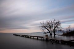 Pijler en bomen stock fotografie