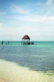 Pijler in Isla Contoy Royalty-vrije Stock Foto's