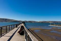 Pijler op Tomales-baai met een botenhuis op het eind Stock Foto's