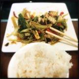 Pijlinktvis en rijst Stock Foto