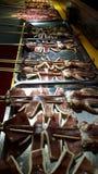 Pijlinktvis op een stok Royalty-vrije Stock Afbeelding