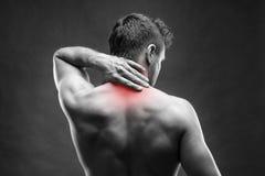 Pijn in de Hals Mens met rugpijn Spier mannelijk lichaam Het knappe bodybuilder stellen op grijze achtergrond royalty-vrije stock afbeeldingen