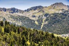 Pijnboom bos en rotsachtige pieken in de Pyreneeën Andorra Europa stock foto's