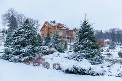 Pijnboom in de sneeuw dichtbij het huis Stock Afbeelding