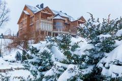 Pijnboom in de sneeuw dichtbij het huis Royalty-vrije Stock Afbeeldingen