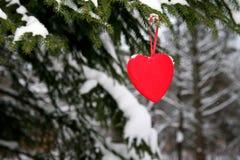 Pijnboom en rood hart Royalty-vrije Stock Afbeelding