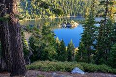 Pijnboom het bos omringen Emerald Bay bij Meer Tahoe, Californië, U stock fotografie