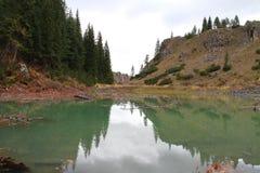 Pijnboombezinning over het meer Royalty-vrije Stock Foto