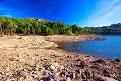 Pijnboombomen in Col. de Bavella-bergen dichtbij Zonza-stad, Corsica Royalty-vrije Stock Afbeelding