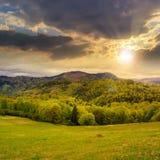 Pijnboombomen dichtbij bos en vallei in bergen bij zonsondergang Stock Foto's