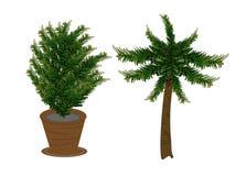 Pijnboombomen in potten en kokospalmen s stock illustratie