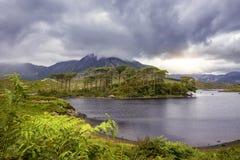 Pijnboomeiland, het Nationale Park van Connemara Royalty-vrije Stock Foto