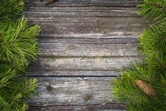 Pijnboomlidmaten en hout Royalty-vrije Stock Foto's