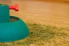 Pijnboomnaalden van de Kerstboom Stock Foto's
