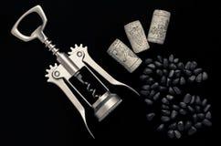 Pijnboomnoten, kurketrekker en cork Stock Fotografie