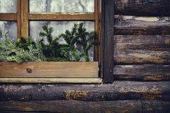 Pijnboomtakken in het venster royalty-vrije stock foto's