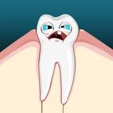 Pijnlijke tand Stock Afbeeldingen