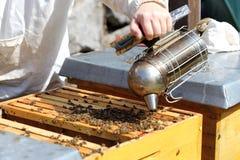 Pijp en bijenbijenkorf Royalty-vrije Stock Afbeeldingen